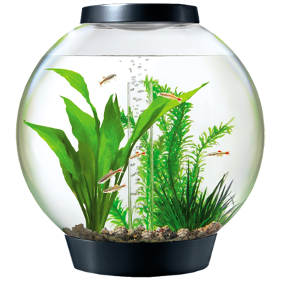 BiOrb Aquarium Kits with Lights