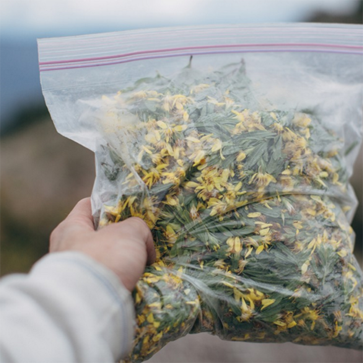 Juniper Ridge - Bag of Wildcrafted Flowers