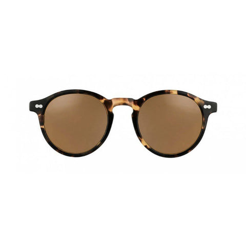 Miltzen Sunglasses Havana Brown