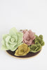 NEW! Felt Succulent Garden Wall Art - 3 x 5 inches