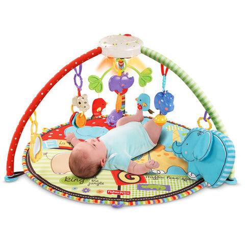 Fisher Price Musical Mobile Play Gym