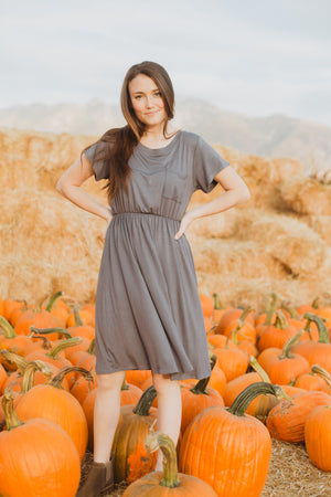 The Madeleine Casual Empire Dress in Shadow