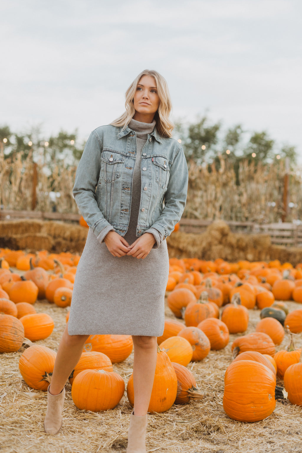 The Revive Ribbed Turtleneck Sweater Dress in Heather Grey, lifestyle shoot; front view paired with denim jacket
