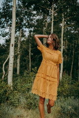 The Chenoa Lace Detail Dress in Mustard