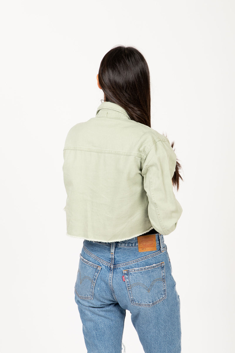 The Gia Utility Shirt Jacket in Olive, studio shoot; back view