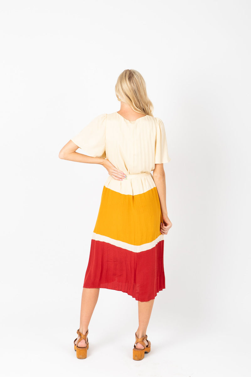 The Ted Colorblock Pleated Dress in Mustard, studio shoot; back view