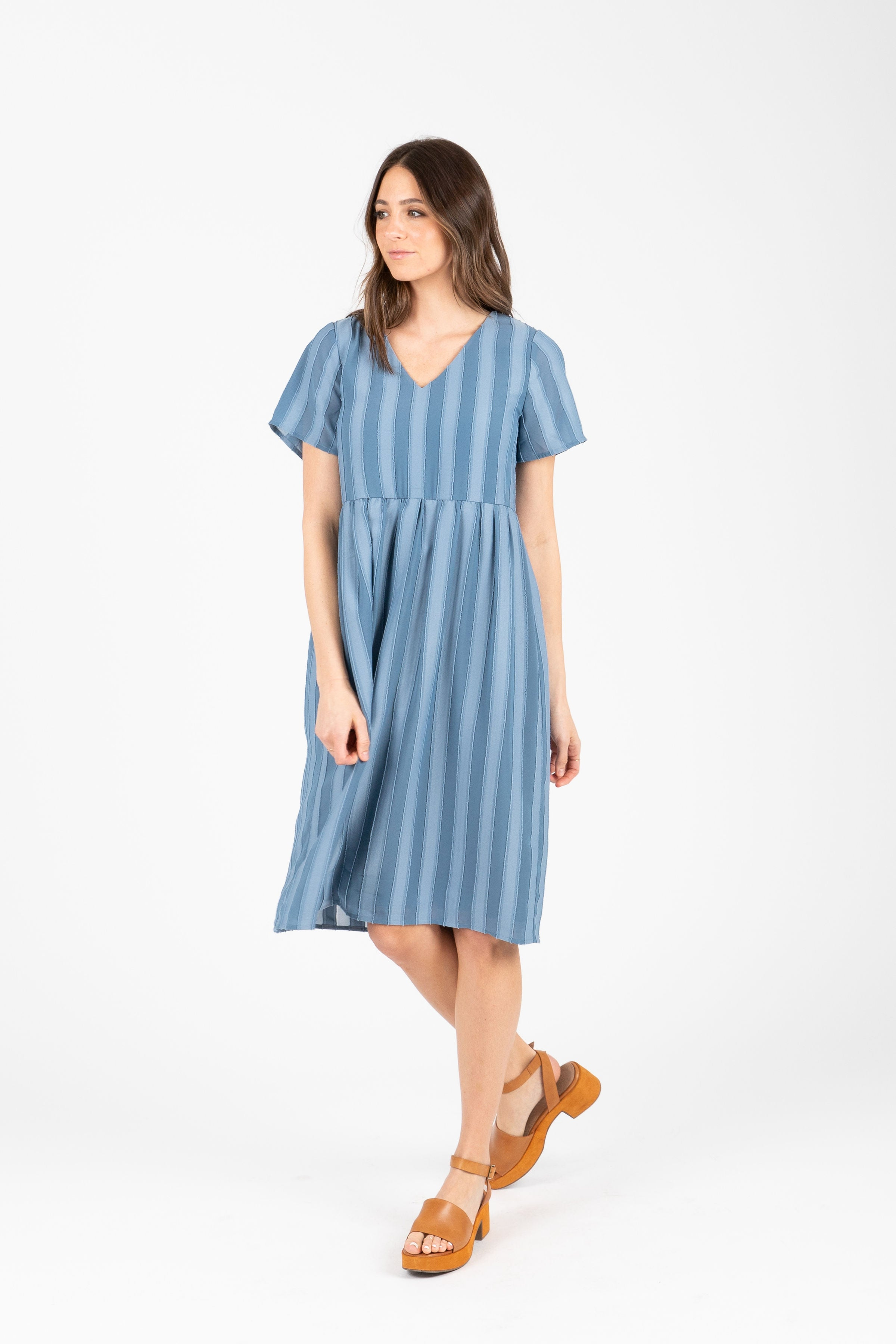 The Carnation Striped Dress in Blue