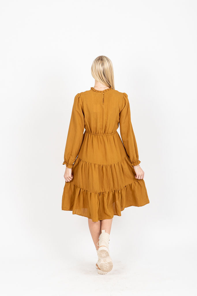 The Narcissa Embroidered Midi Dress in Camel, studio shoot; back view