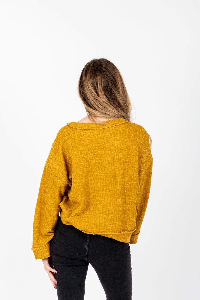 The Winstone Casual V-Neck Sweater in Mustard, studio shoot; back view