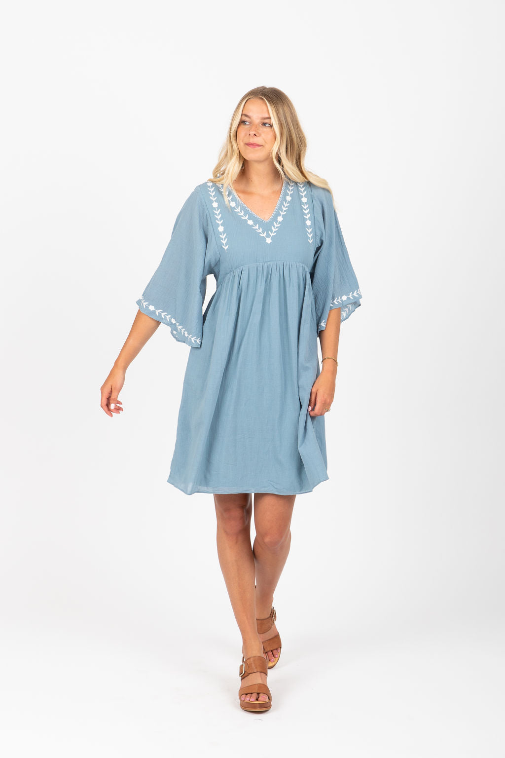 The Yuke Embroidered Dress in Blue