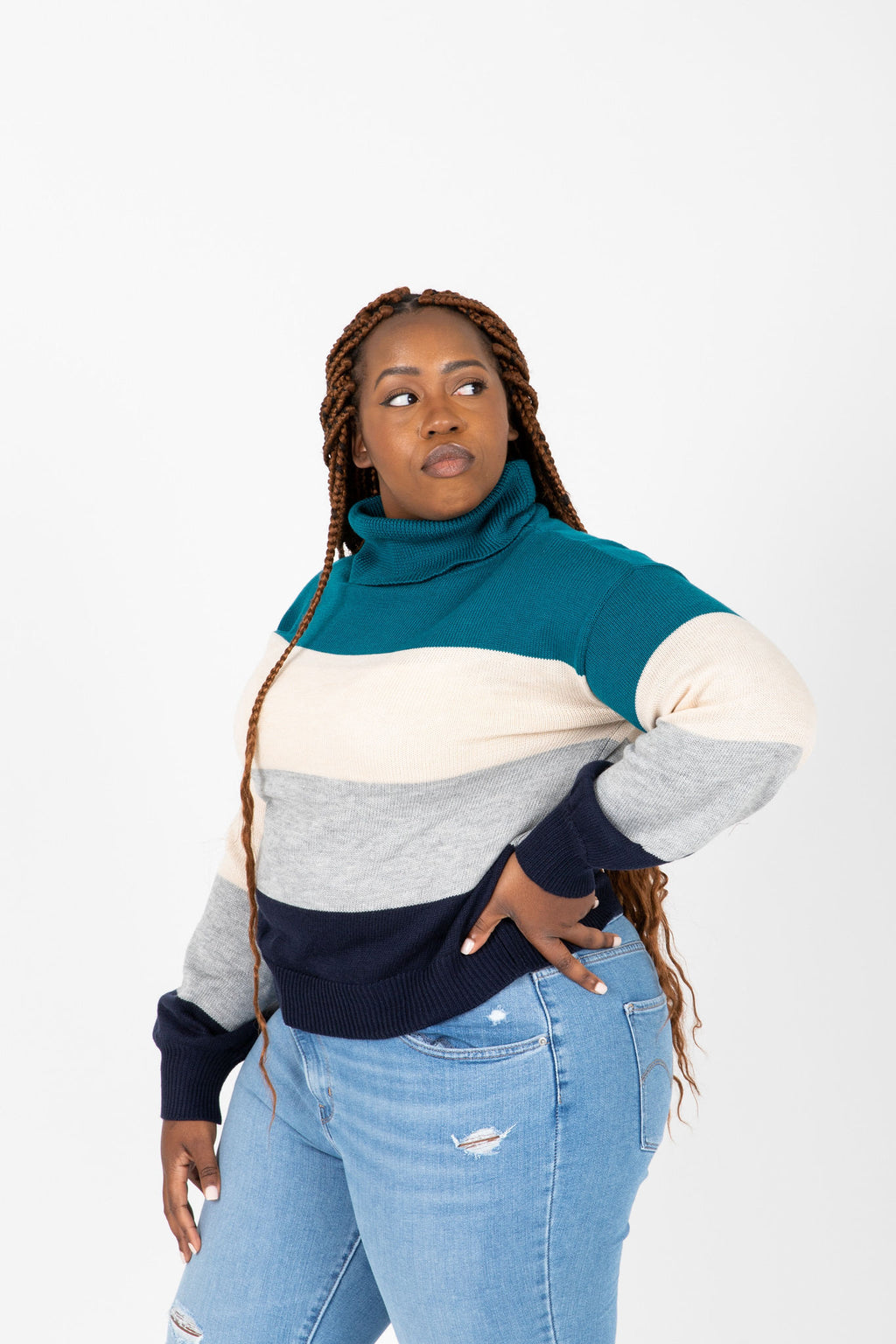 The Lea Turtleneck Sweater in Blue Stripe