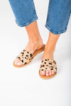 Coconuts by Matisse: Boardwalk Slide Sandal in Leopard, studio shoot; front view