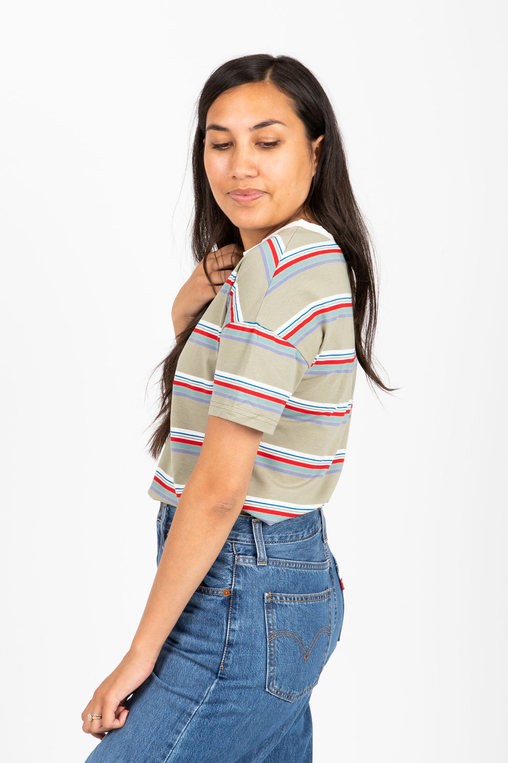 The Kanick Striped Tee in Sage Multi