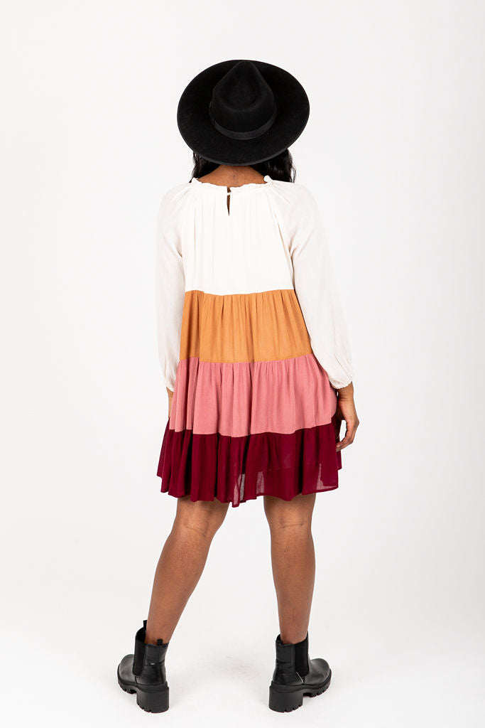 The Rowland Colorblock Dress, studio shoot; back view