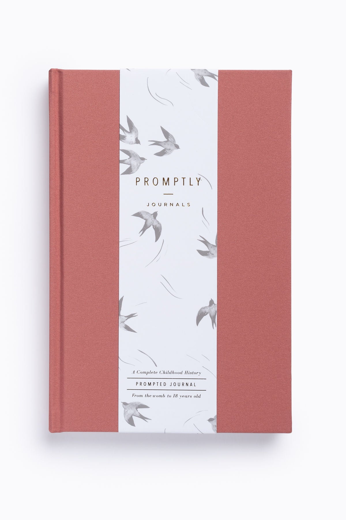 Promptly Journals: Childhood History in Dusty Rose