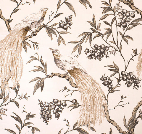 Aviary Taupe Fabric by the Yard