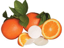 Citrus Circles Deodorizing Disks