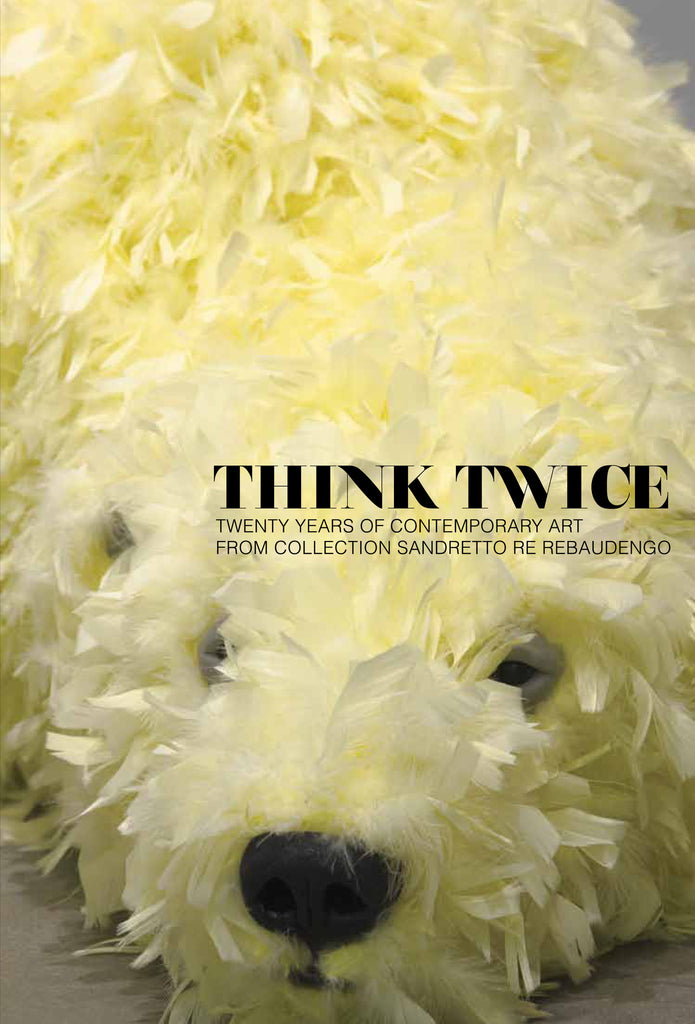 Think Twice: Twenty years of Contemporary Art from Collection Sandretto Re Rebaudengo