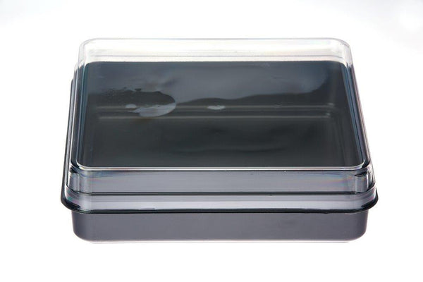 Executive Meal Container Black 257mm x 257mm x 50mm