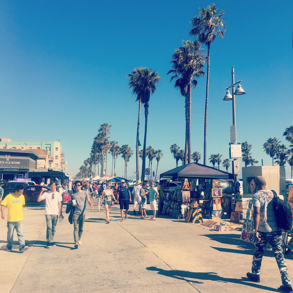 Join PhoneSuit on Venice Beach July 4th