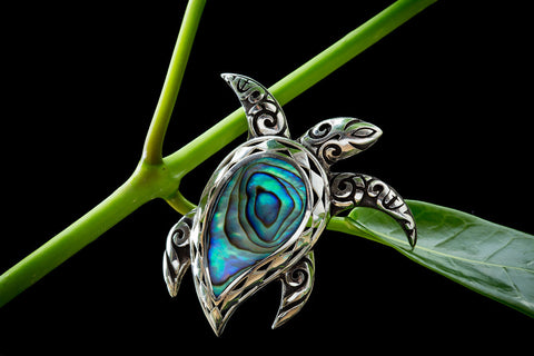 Honu with Paua Shell
