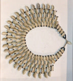 Cowries Necklace Native
