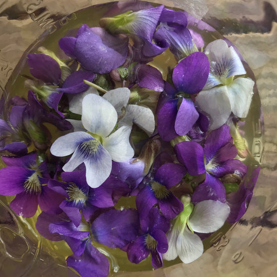 apple cider vinegar infused with violet flowers