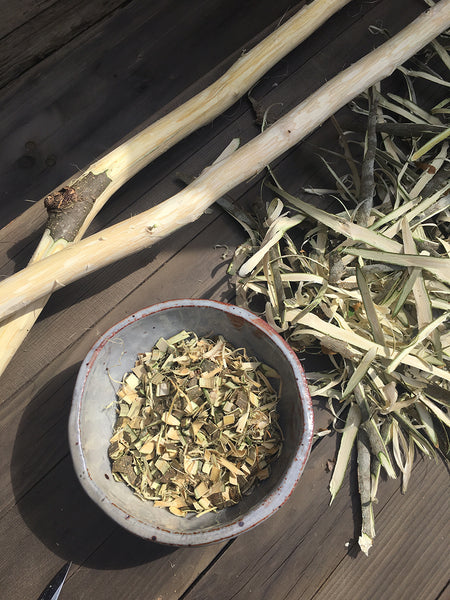 Let the Light In - Harvesting Mimosa Bark - VILLAGERS