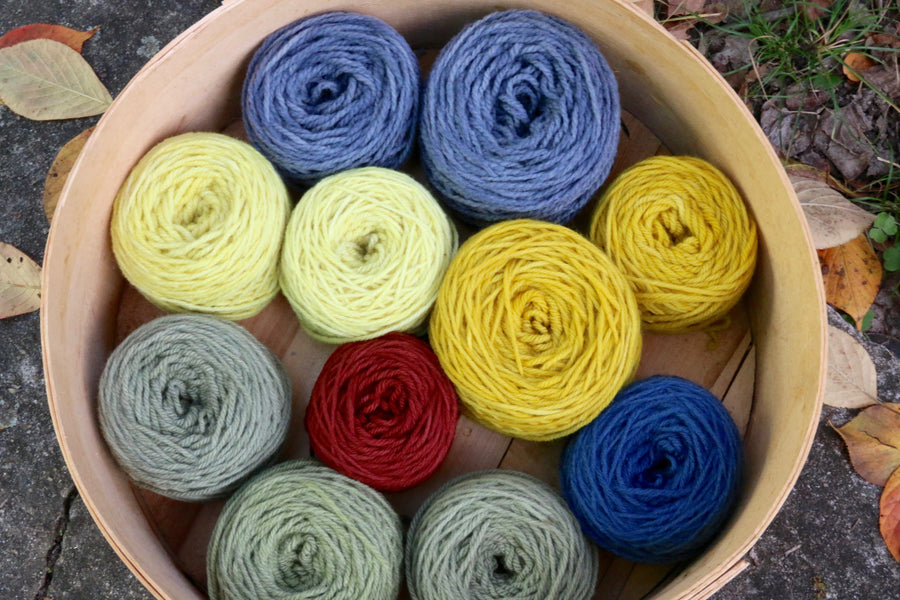 09.29.19 // Intensive:  Natural Dyeing with Mari Stuart  // 2-5:30p