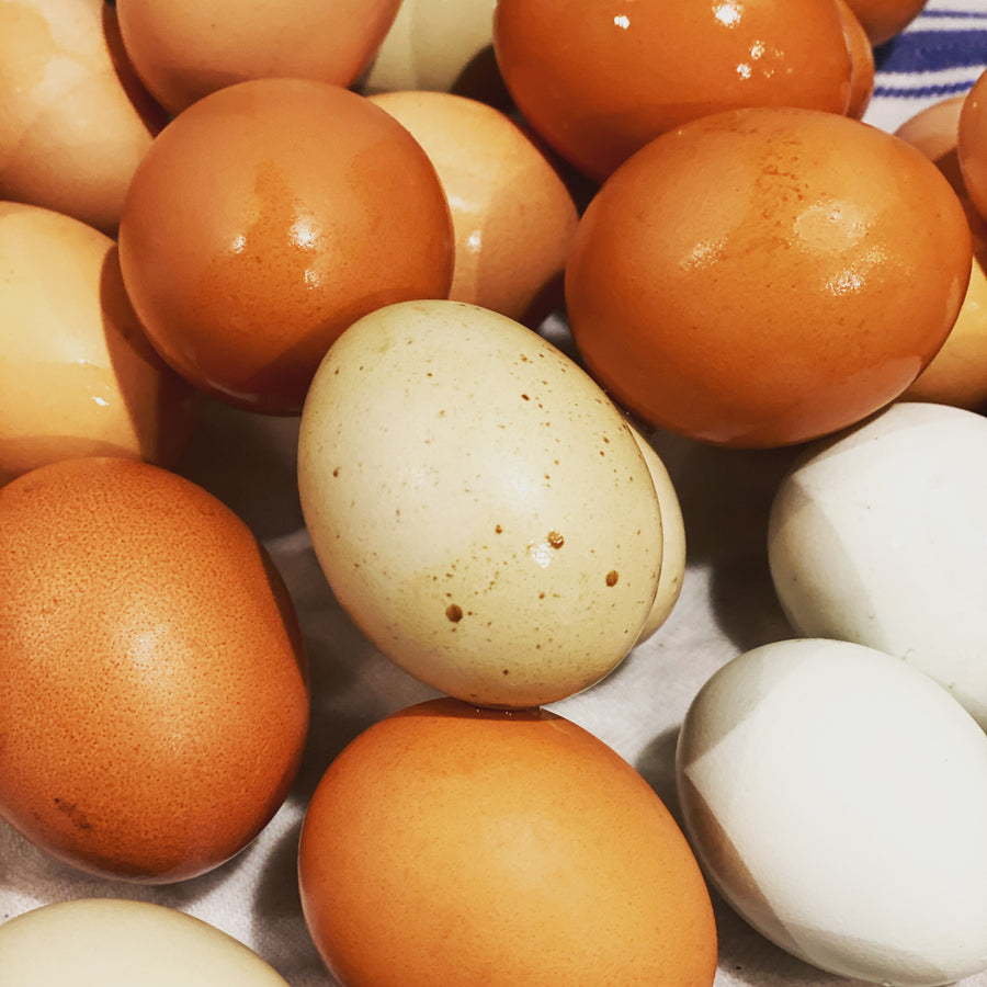 Farm Fresh Eggs 1 dozen