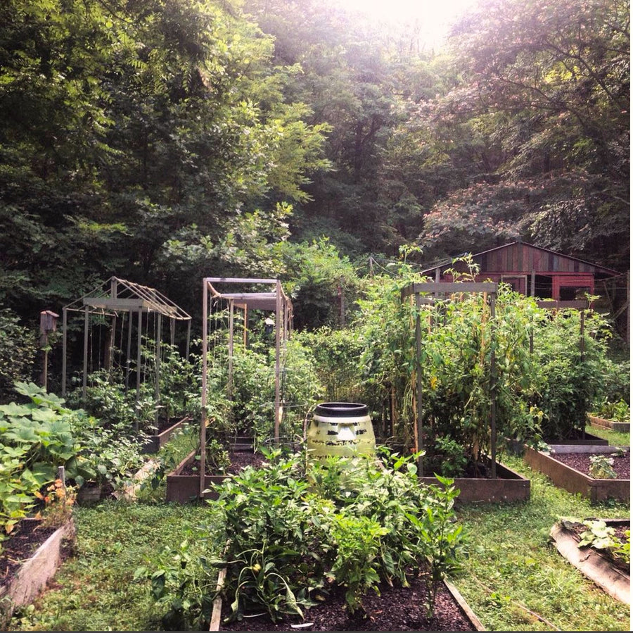 05.17.17 // Planning Your Garden for Year Round Abundance with Becky Beyer // 6:30-8:30pm, $5-20