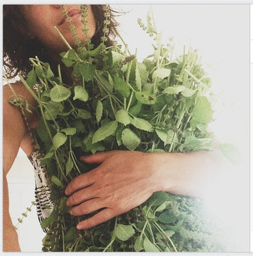 01.19.16 // Herbal Stress Management with Janet Kent // 6-8pm