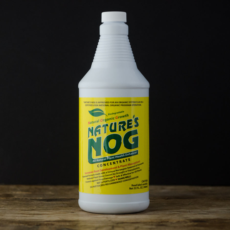 Nature's Nog Liquid 1 Quart