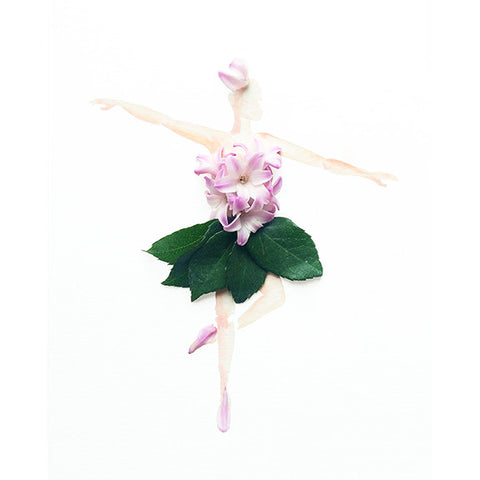 Ballerina, Hyacinth/Rose (Photography Print) - Mari Orr