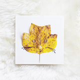 Tulip Tree Leaf Cat Autumn Leaves Photo Print by Mari Orr