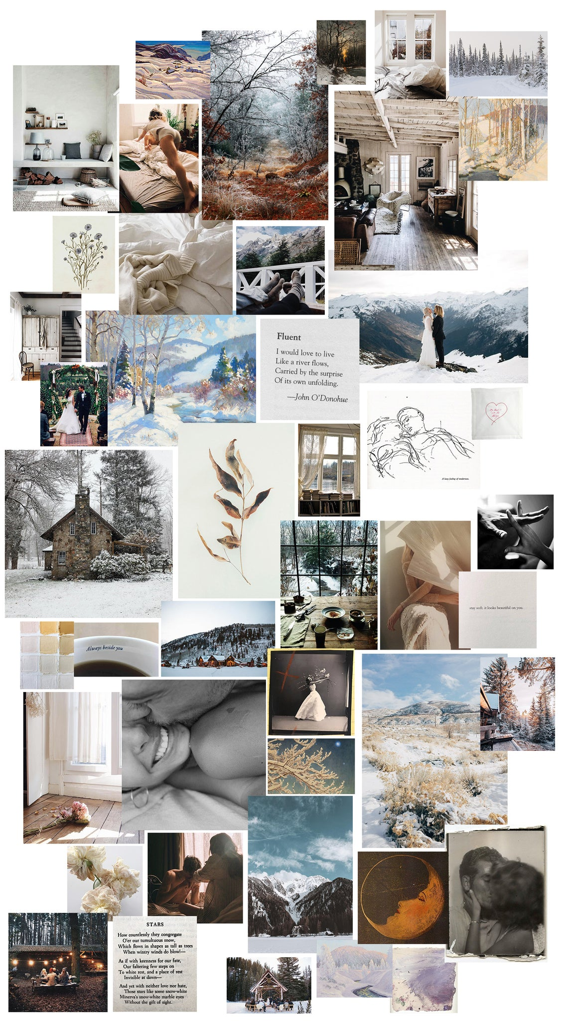 mood board, flower, winter, winter's light, light, cozy, love, engagement, inspo, inspiration