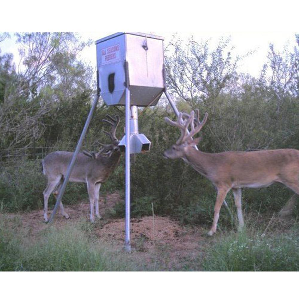 protein feeder hampton strategies fr nh and feeders tips deer feeding concerns dead
