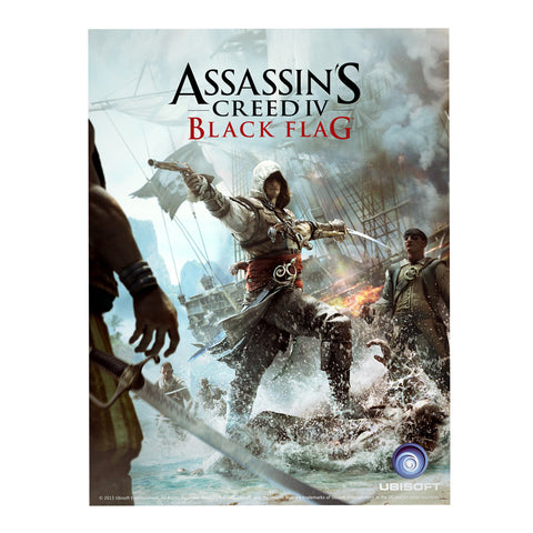 Assassin's creed black flag poster