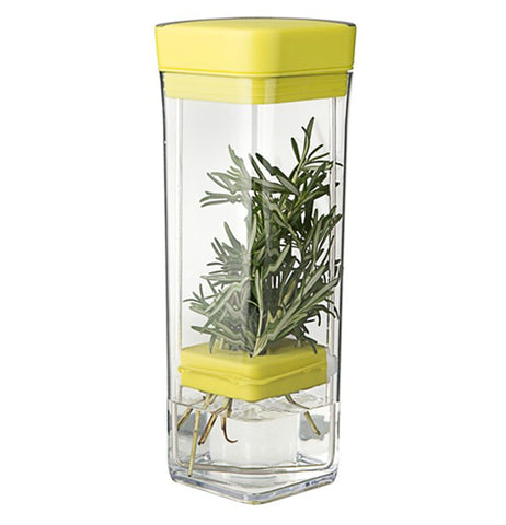 The container is shown closed up with the herbs being held in the holder below the middle. Underneath the holder is a melting ice cube. Above the holder are the stems of the green herbs.