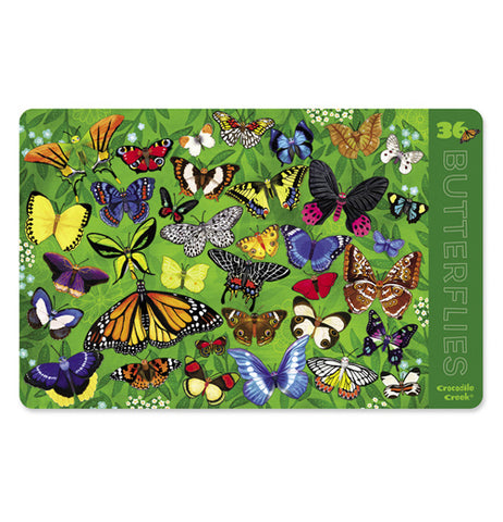 "Front of green ""Butterflies"" 2-sided place mat with butterfly design."
