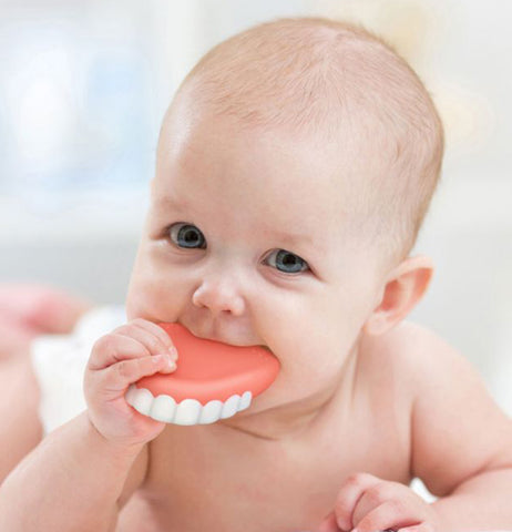 A baby is shown gnawing on the false teeth.