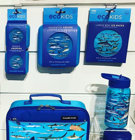 Blue ice packs with sharks on the front. They are displayed on a wall with other shark products.