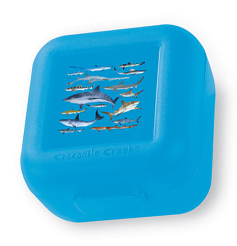 Blue polypropylene snack keeper with sharks on the lid.