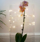 The lights are shown wrapped around both a transparent cylindrical object and a tall flower.