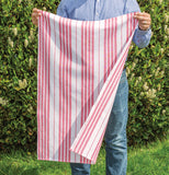 A pink and white striped dish towel is being held out by a man outside on grass with bushes in the background