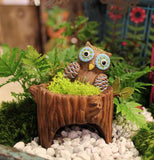 This mini stump planter has a picture of an owl in the fairy Garden.