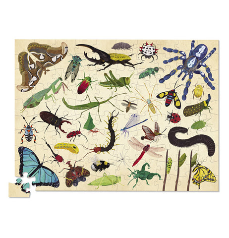 The puzzle is completed showing off a variety of different insects.