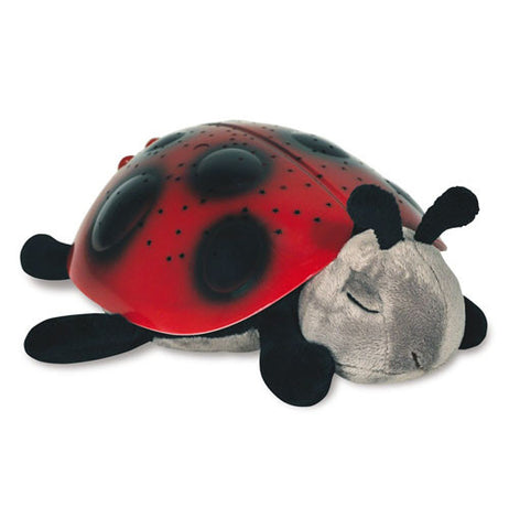 This toy is of a ladybug with a red shell covered with black dots. Its legs are black and it has a gray head with black antennae.