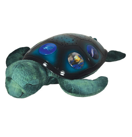 This toy is of a sea turtle with a blue shell, green flippers, and a green head. On the shell are pictures of different sea creatures, such as a sea otter and a leatherback turtle.