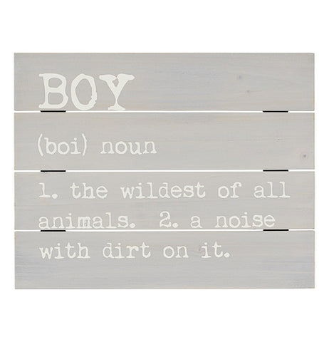 "The close-up of the ""Boy Definition"" Pallet Sign was painted gray with a funny definition of a boy."